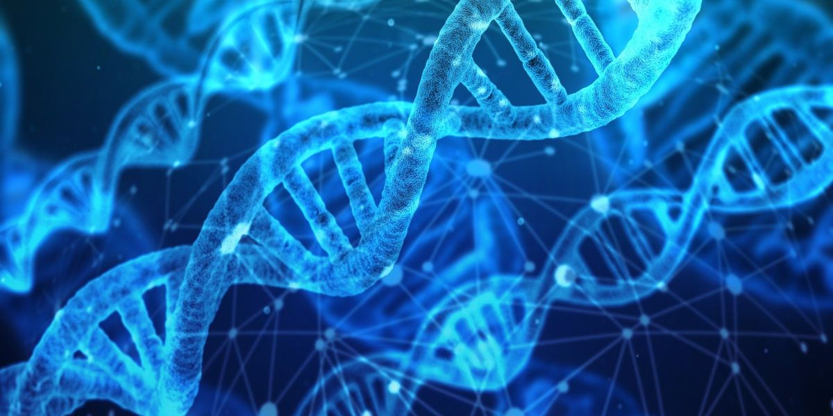 Orlando homicide detective uses commercial DNA website to solve cases