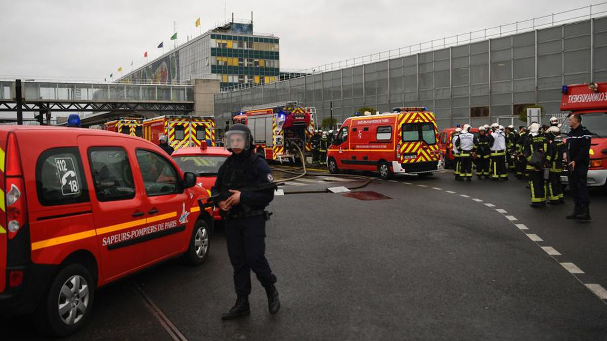 Man shot dead after taking soldier's gun at Paris airport