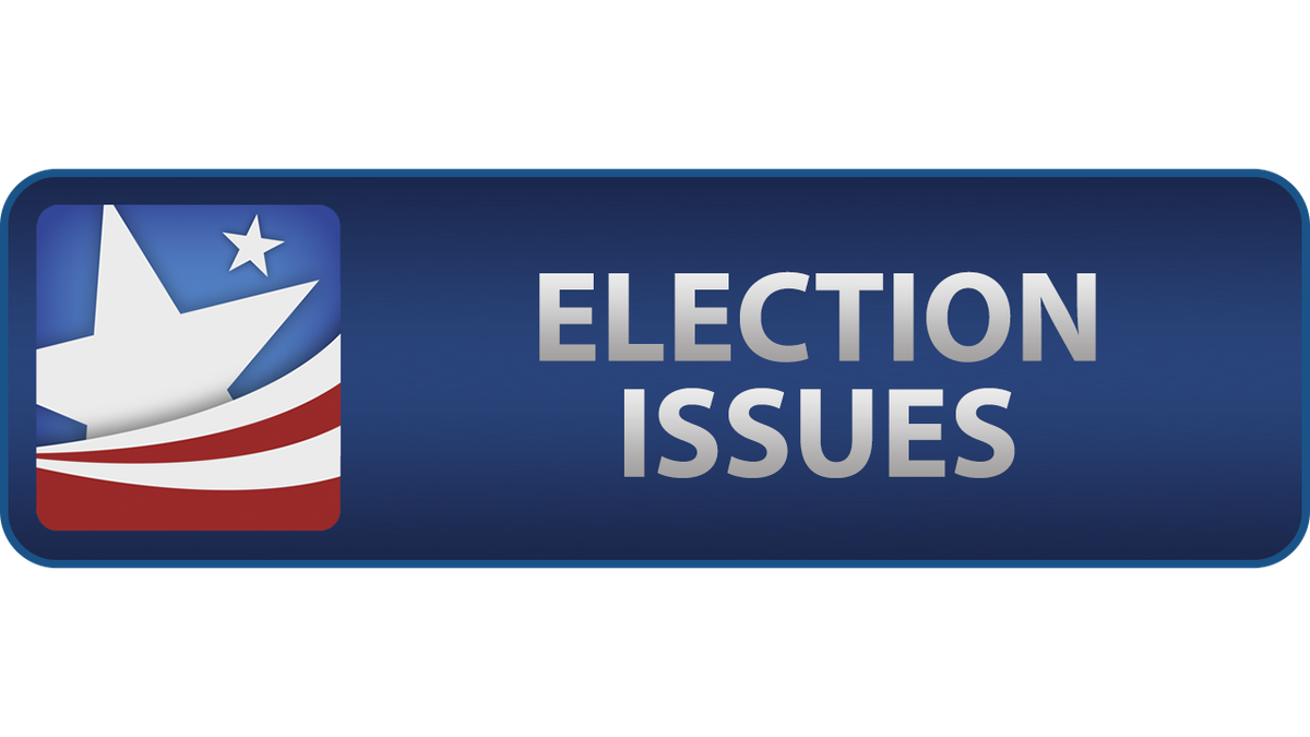 You Decide 2020: How to report a voting issue